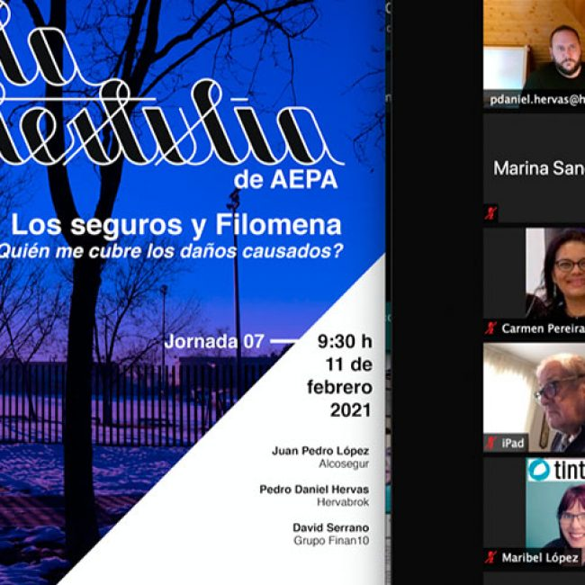 Ya puedes ver el vídeo – La Tertulia de AEPA  «Los seguros y Filomena ¿Quién me cubre los daños causados?»