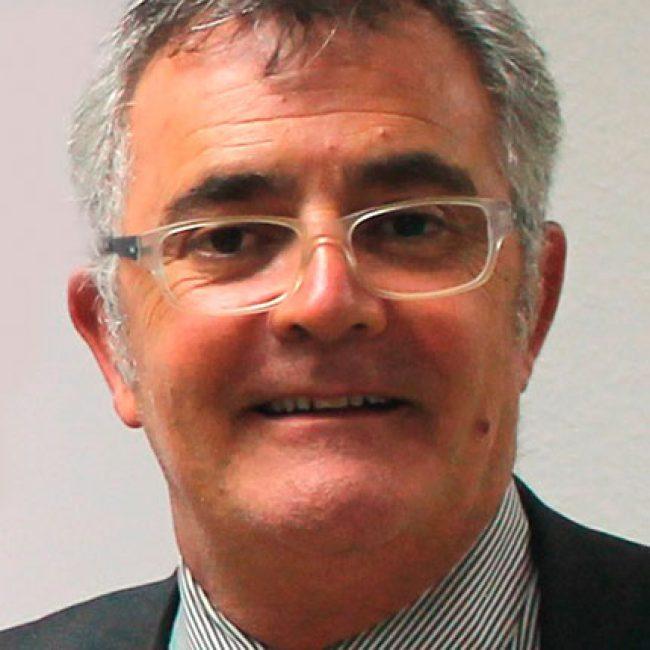 D Francisco Palomino Mora
